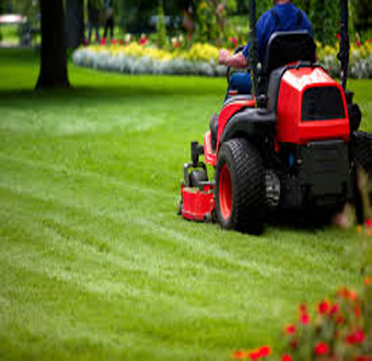 Grounds Maintenance Service